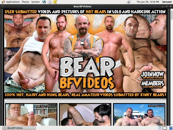 Bear BF Videos With Pay Safe Card